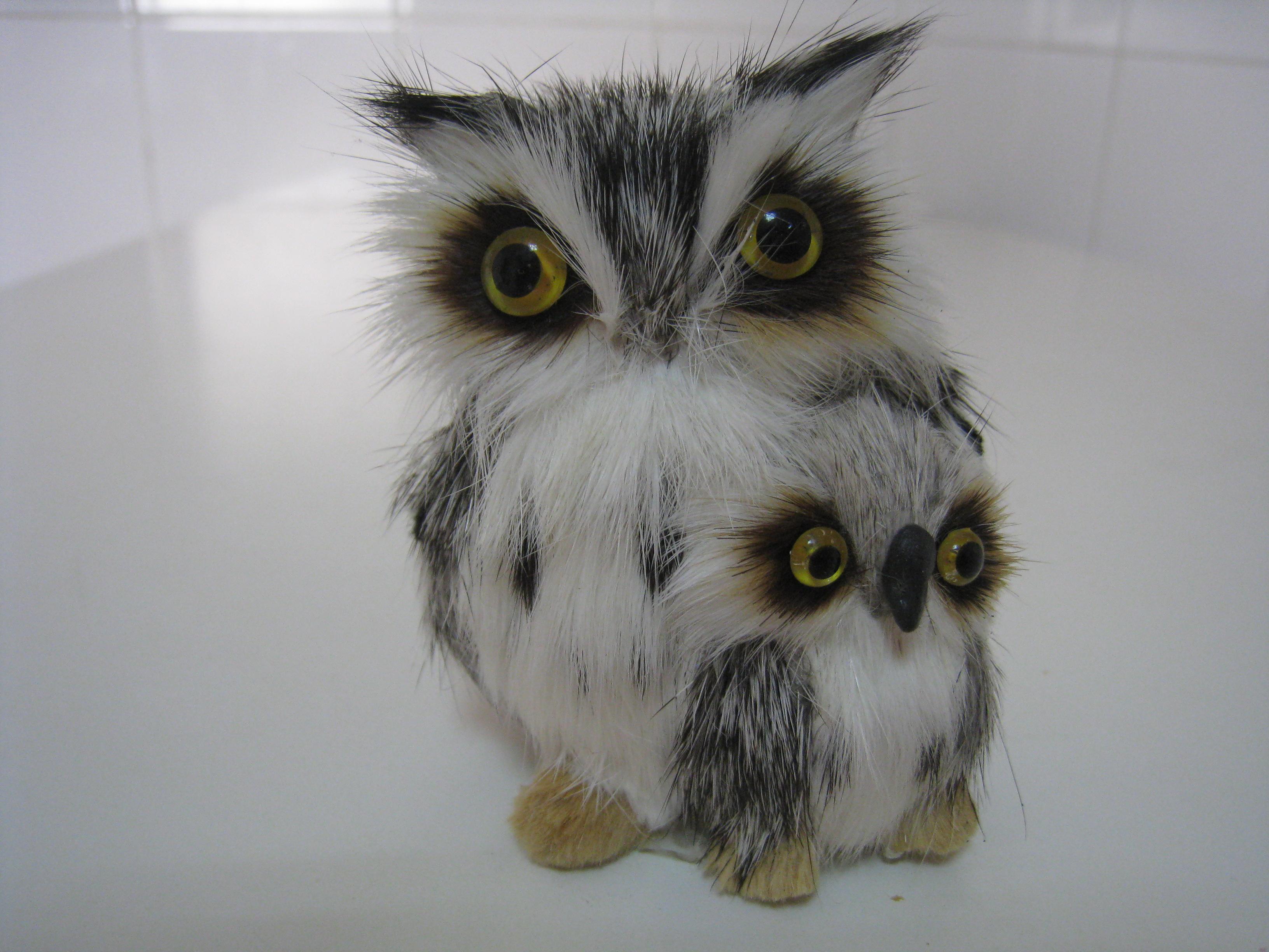 m's owls | experimental mom